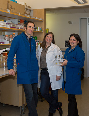 Professors Hernday, Hoyer and Nobile (from left to right) play integral roles in a new Valley fever research project.